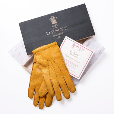 A Glove Steeped in Luxury