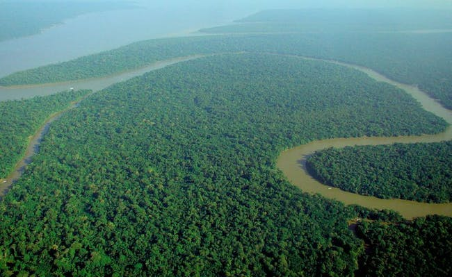 Deforestation in Brazil's Amazon Rainforest Will Cause Major Warming by 2050