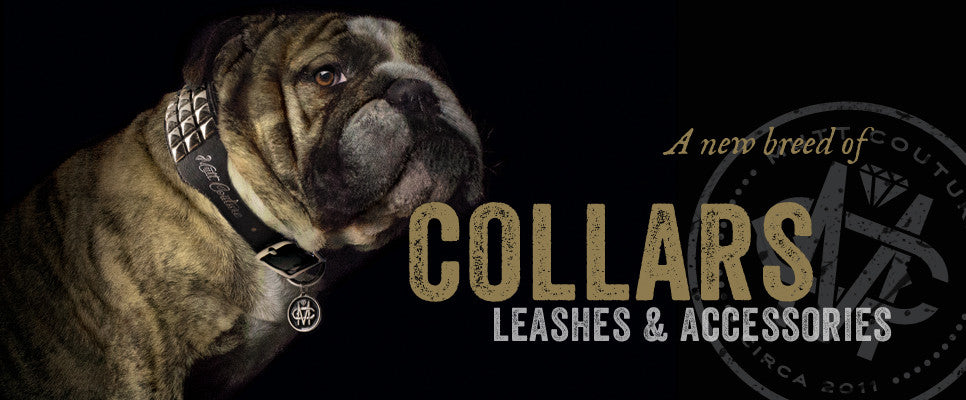 Collars, Leashes, and Accessories