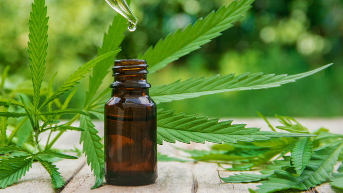 What Really are the Benefits of CBD?
