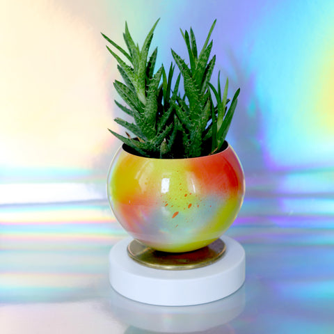 Candy Colored Planter