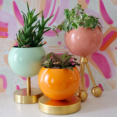 Colorful planters on pink abstract paper