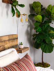Brass two light wall sconce with a plug in cord above a small nightstand
