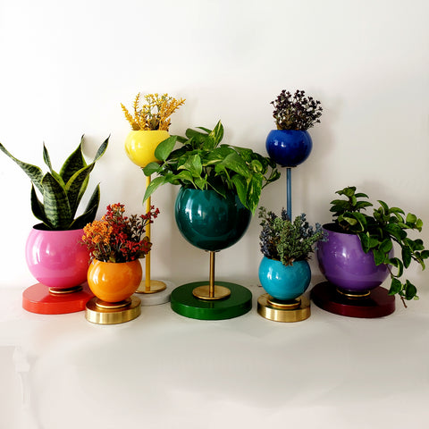 Rainbow Planter Collection