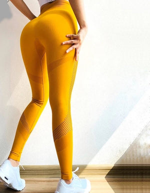 Women Squat Proof Leggings