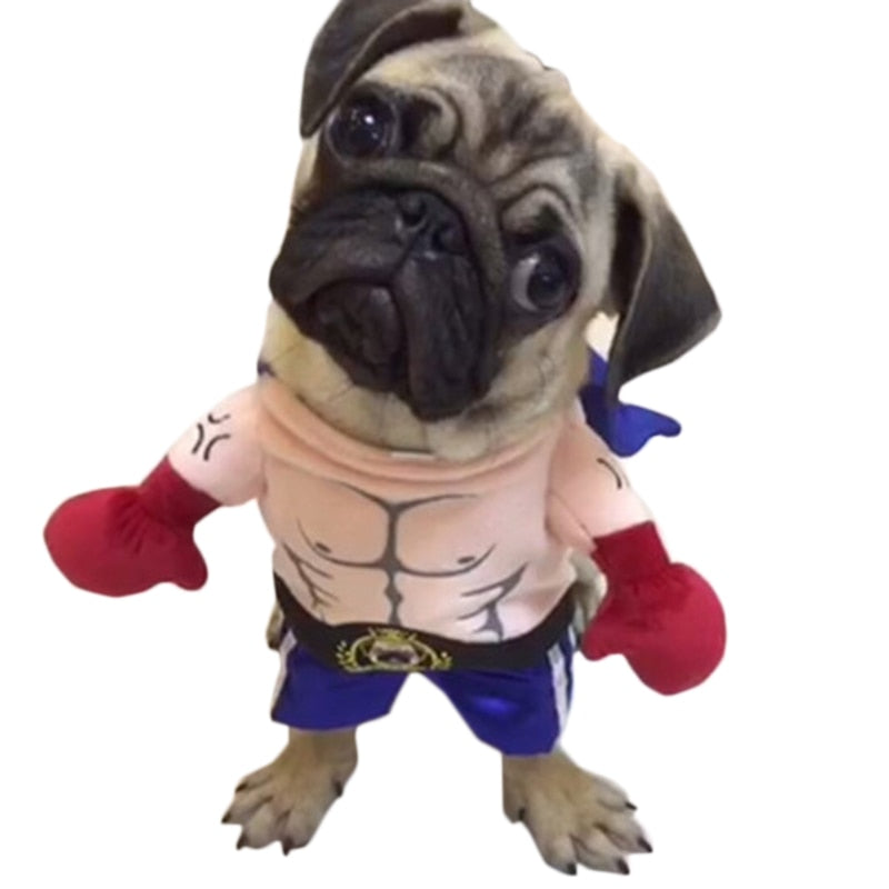 Dog Cat Costumes Boxer Cosplay Suit Pet  (50% OFF)
