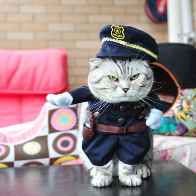 Clothes Funny, Cute Cat Costume (50% OFF)
