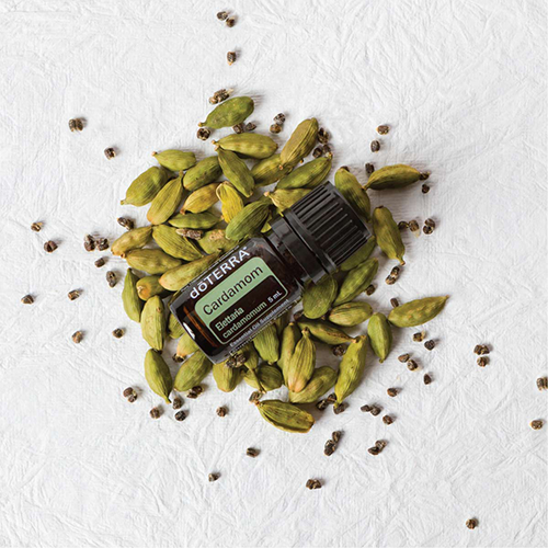 Cardamom Essential Oil - 5mL