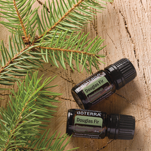 Douglas Fir Essential Oil - 5mL