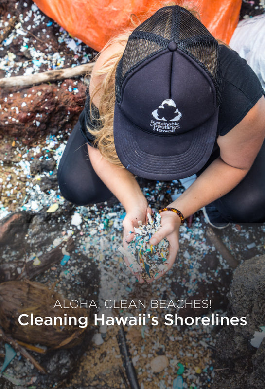 Person cleaning Hawaii's shorelines.