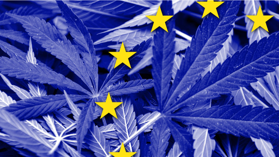 EU Ruling And Election Result May Change The Face Of The CBD Market Around The World