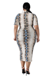 PLUS SIZE ANIMAL PRINT DRESS - Shoenanigan