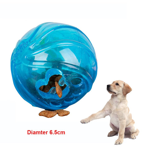 Educational Treat Ball Toy