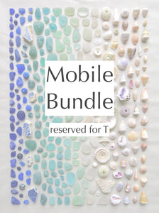 Mobile Bundle Reserved for T