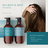 Theorie: Sage - Sea Kelp & Mint Purifying Shampoo