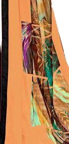 Georgette Digital Printed Saree With Blouse-Black with Multi Color Saree