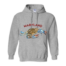 Load image into Gallery viewer, Maryland Chesapeake Bay Hoodie Light Colors
