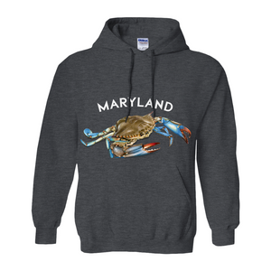 Maryland Chesapeake Bay Hoodie Dark Colors