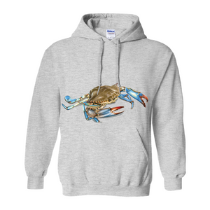 Chesapeake Bay Hoodie Light Colors
