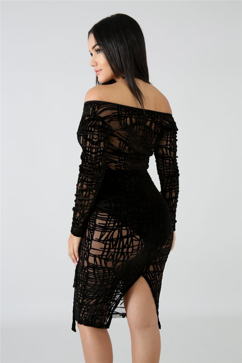 See Through Lace Bodycon Dress
