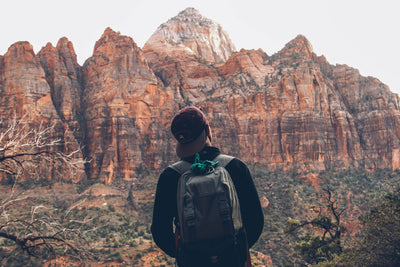 How To Pick The Best Travel Backpack For Your Next Adventure