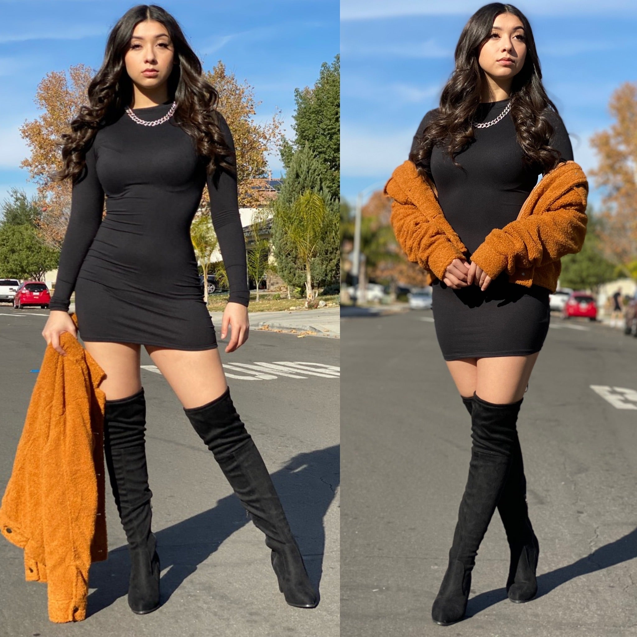 "The ""Kaira"" Bodycon Long Sleeve Dress"