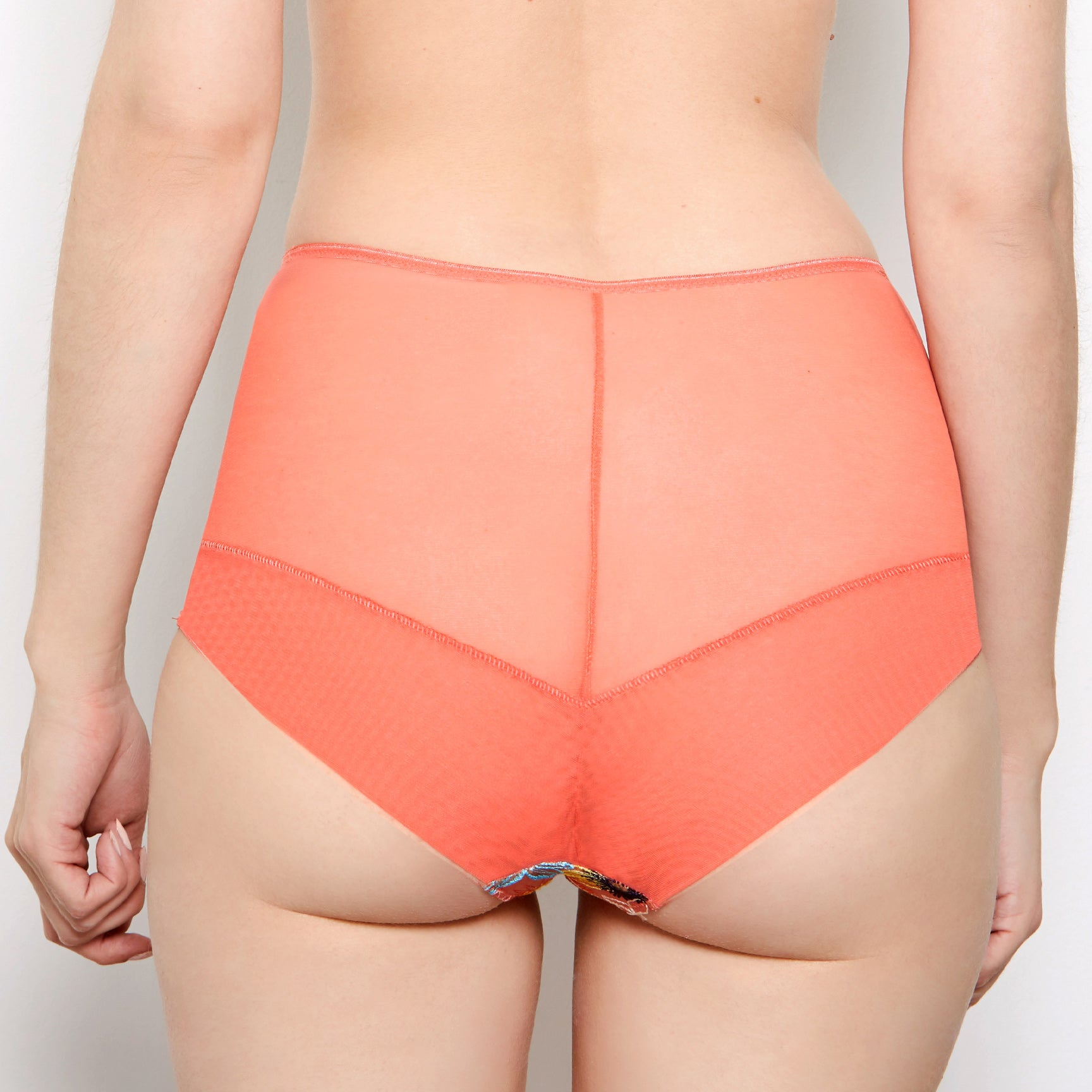 Eden Coral High Waisted Knickers