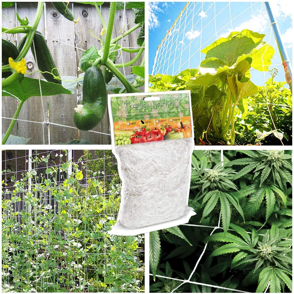 Plant lattice net-suitable for climbing fruits and vegetables, hydroponics planting net, easy to use