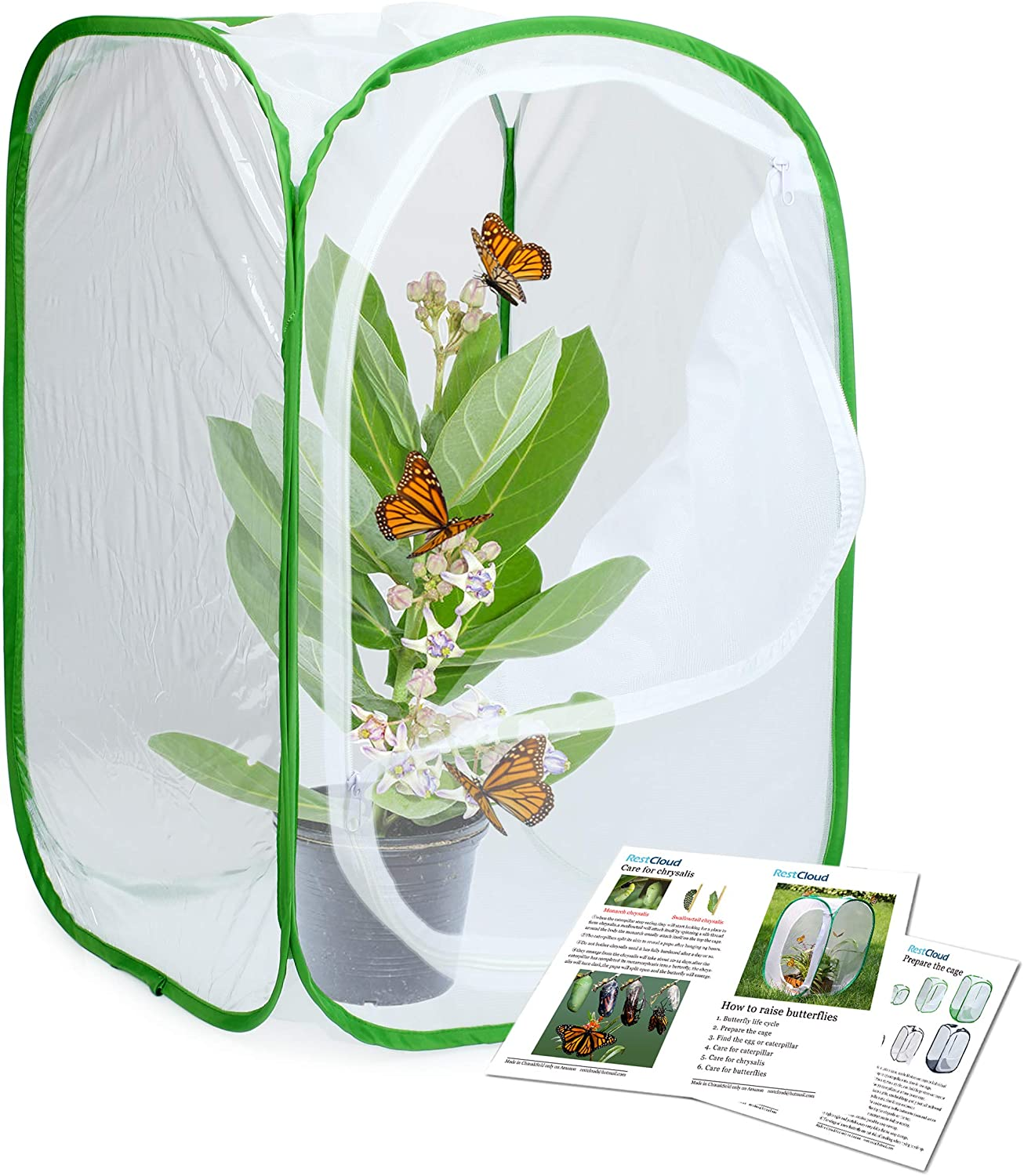 nsect and Butterfly Habitat Cage