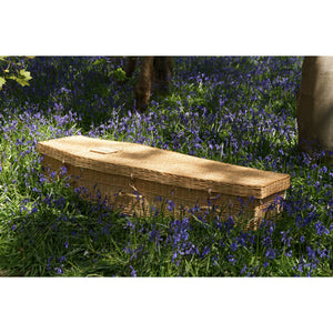 Larkspur Willow Coffin