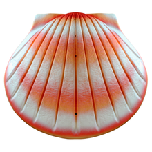 Load image into Gallery viewer, The Shell Urn
