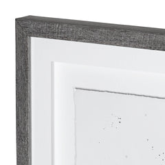 Framed Art - Birch Branches I