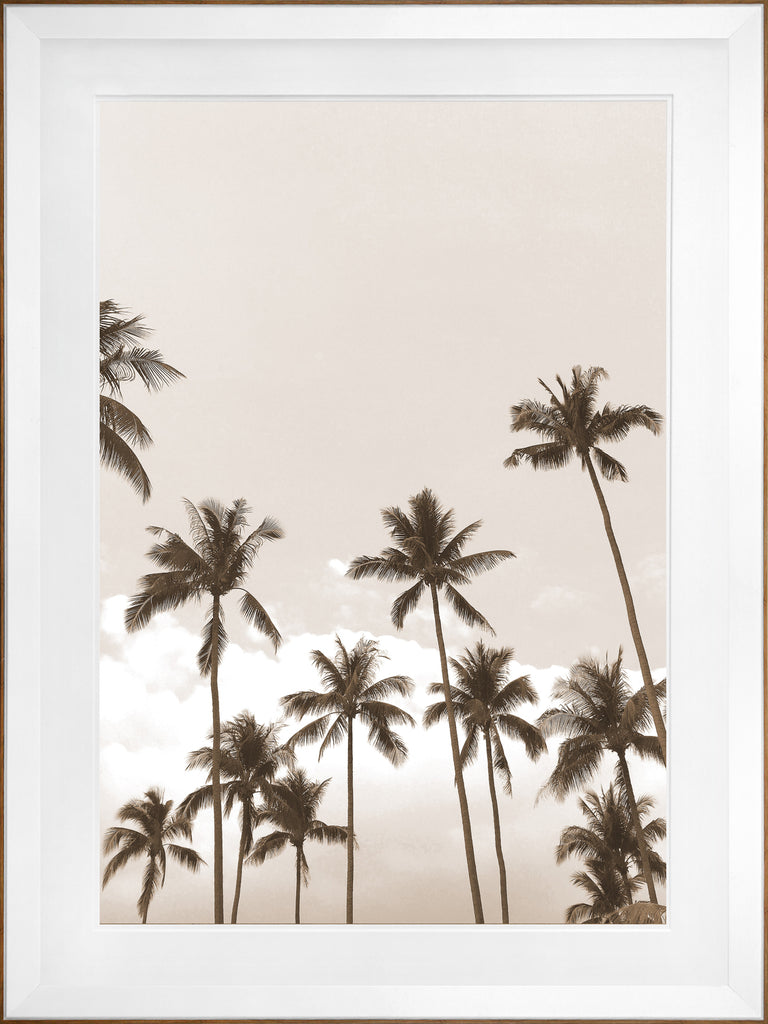 Palms Framed Art