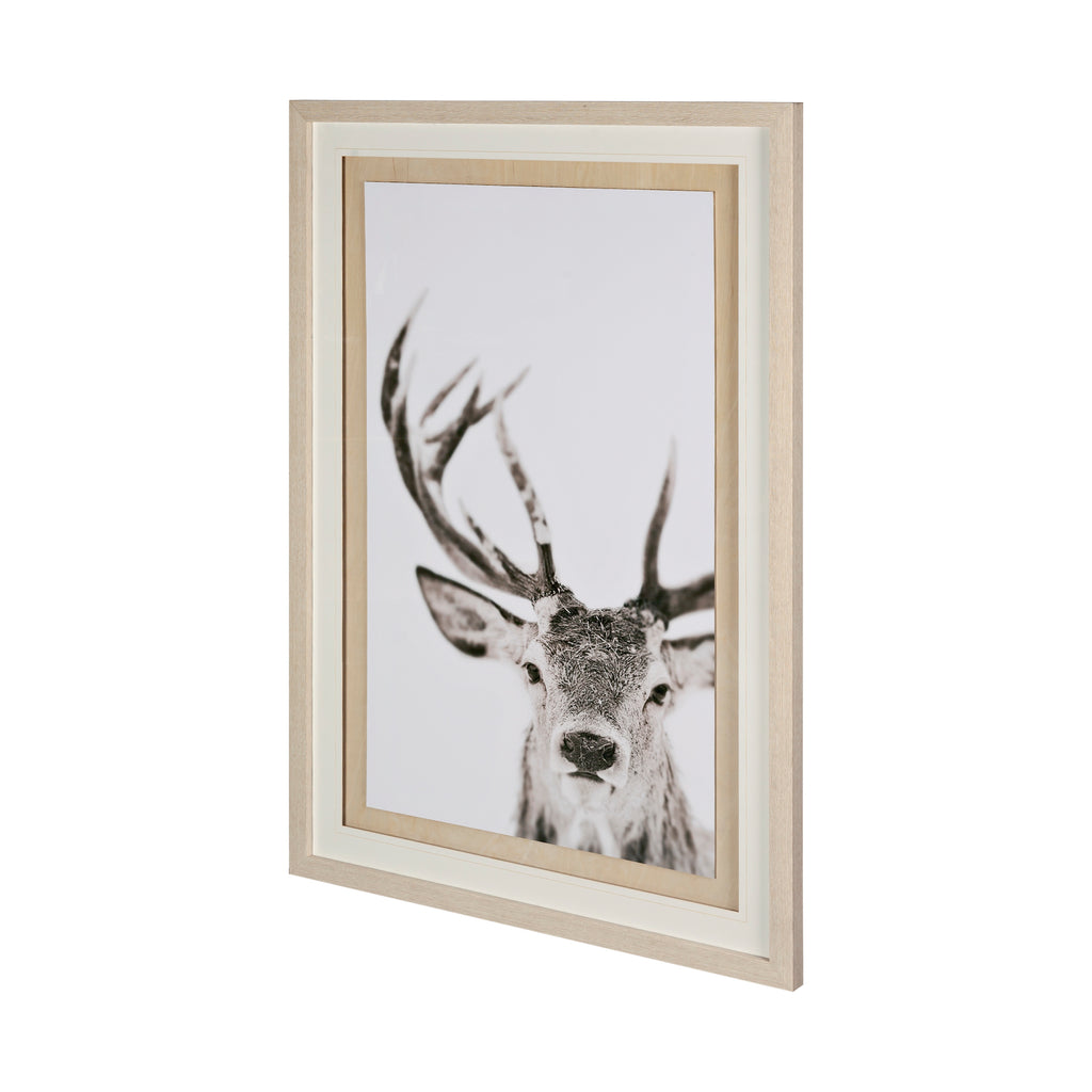 Winter Deer Framed Art