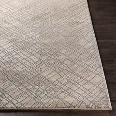 Tibetan Medium Grey Area Rug
