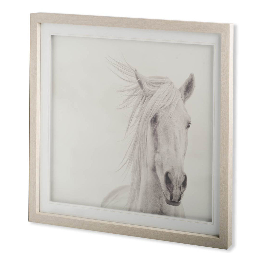 Wind Blown Mane Framed Art