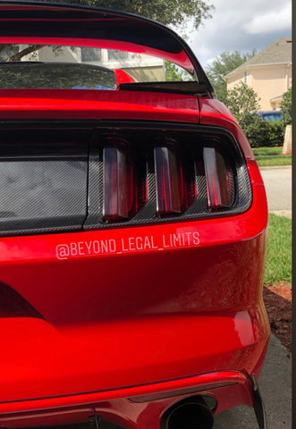 S550 tail light bezels