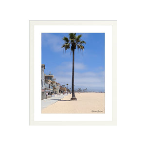 Palm at Newport Beach