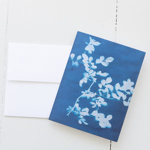 Rose Sun Print Note Card (single card) with envelope