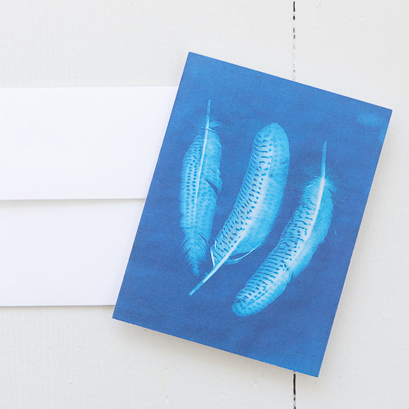 Trio of Feathers Sun Print Note Card (single card) with envelope