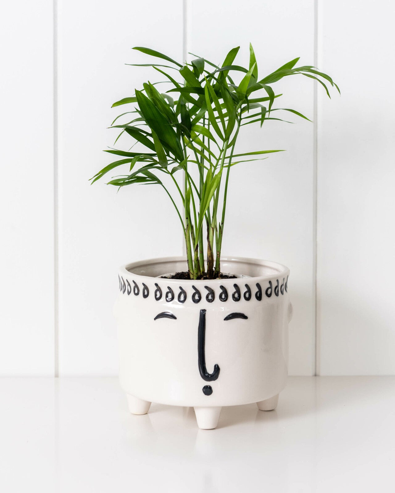 white and black face planter