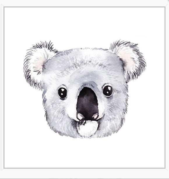 koala floating frame print