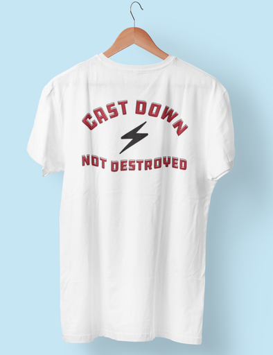 NOT DESTROYED TEE