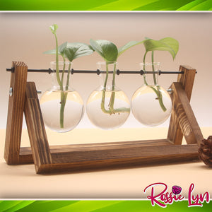Wooden Desktop Decorative Planter