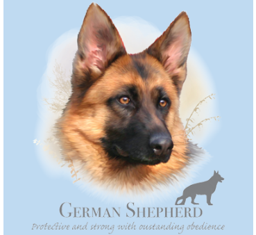 Beautiful full color German Shepherd Face