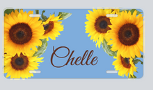 Load image into Gallery viewer, Personalized Decorative License Plates