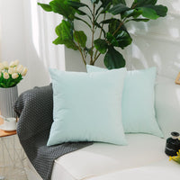 Home Brilliant Spring Decorative Throw Pillow Case Solid Home Decor Supersoft Velvet Plush Cushion Cover for Baby, (50x50 cm, Set of 2), Mint