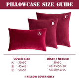 NANPIPER Set of 2 Velvet Soft Decorative Cushion Throw Pillow Covers 20x20 Inch/50x50 cm Cozy Solid Velvet Square Pillowcase Cushion Covers Wine Red for Couch and Bed