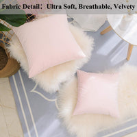 Home Brilliant Decorative Solid Accent Pillow Case Plush Velvet Cushion Cover for Sofa, 2 Pack, 20x20 inch (50cm), Pastel Pink