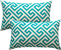 Top Finel Decorative Throw Pillow Covers Durable Canvas Outdoor Cushion Covers 12 x 20 for Couch Sofa Bedroom Car, Pack of 2, Green Labyrinth